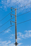 Electricity pillar with snake guard Royalty Free Stock Photo