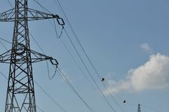 Electricity pole. With blue sky on the background Stock Image