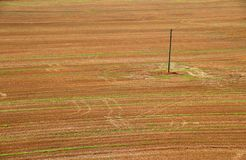 Electricity pole. In the field stock photo