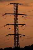Electricity pole and lines. In the sunset Stock Photography