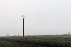 Electricity pole in the middle of nature Royalty Free Stock Photography