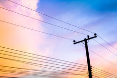 Electricity poles Royalty Free Stock Images