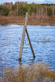 The electricity poles in the water. Flood - the river Mologa. The power line poles in the water. Near the entrance to the village Maksatikha Royalty Free Stock Images
