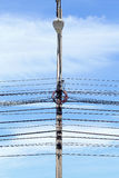 Electricity poles and wires with blue sky Royalty Free Stock Photography