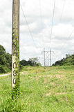 Electricity post. Under white sky Stock Images