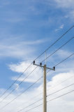 Electricity post and blue sky Royalty Free Stock Photo