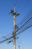Electricity post with clear blue sky Stock Photography