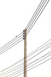 Electricity post in white background. isolated Stock Photos