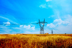 Electricity. Posts on wheat field stock photography