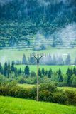 Electricity power line poles construction in middle of fields in countryside. Energy stock photo