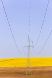 Electricity powerlines over colorful rape seed fields Royalty Free Stock Photo