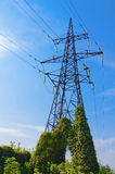 Electricity pylon. Old electricity pylon covered wild vine against blue sky stock images