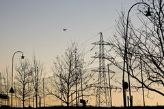 Electricity pylon. Silhouette of an electricity pylon , trees, lamp posts and road signs alonga a main road Stock Images