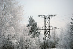 Electricity pylon in forest Stock Photos