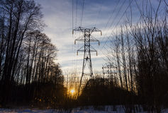 Electricity pylon in the forest. With sunset on background Stock Photos