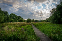 Electricity pylon next to meadow path Royalty Free Stock Photography