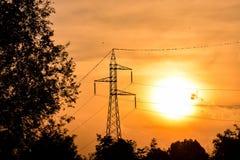 Electricity Pylon Pole Royalty Free Stock Image