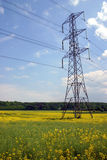 Electricity Pylon In Rapeseed Field Royalty Free Stock Images