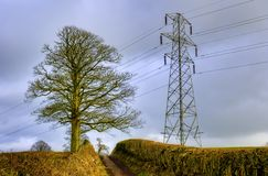 Electricity pylon and tree. With cloudy sky in background Stock Photos