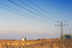 Electricity pylon wires. Over a field royalty free stock image