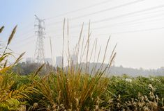 Electricity pylon and wires on urban fringe in sunny winter afternoon. Electricity pylon and cables on the urban fringe in sunny winter afternoon,Chengdu,China royalty free stock photography