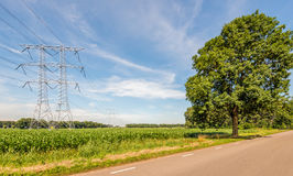 Electricity pylons and cables in an agricultural landscape with Royalty Free Stock Photos