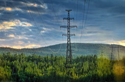 Electricity pylons cutting through forest Royalty Free Stock Photography