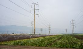 Electricity pylons and lines over arable land. Green crops and electricity pylons. On the left: arable land is irrigated with a circular sprinkler system Royalty Free Stock Images