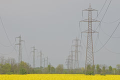 Electricity pylons on a oilseed rape field Royalty Free Stock Images