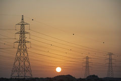 Electricity Pylons Silhouetted At Sunset Royalty Free Stock Images