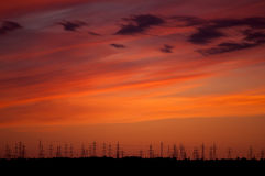 Electricity pylons. In sunset lighting Stock Photography