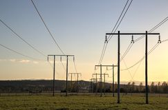Electricity Pylons Trailing Away in Field Stock Photography