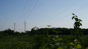 Electricity Pylons. Two electricity pylons in the country during sunny day. Full HD resolution. 200MB/s stock video footage