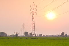 Electricity transmission pylon  in the field on sunset Royalty Free Stock Photography