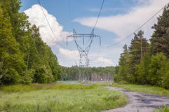 Electricity transmission pylon in a forest Stock Photography