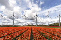 Electricity wind turbines in a row royalty free stock image
