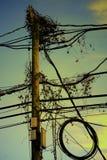 Electricity wooden pole Stock Photos