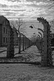 Electrified Fence at Auschwitz Royalty Free Stock Photos