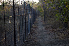 Electrified fence with walkway in nature - Kruger National Park Royalty Free Stock Images