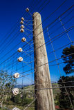 Electrified Fence Wiring Detail Stock Photography