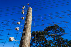Electrified Fence Wiring Detail Stock Images