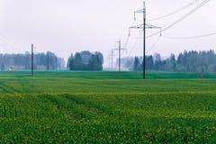 Electro línea de transmisión fotografía de archivo