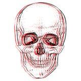 Electro skull. Illusion. Electro skull. Hand-drawn style vector illustration