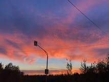 Electro trådar och ett vägmärke på solnedgången royaltyfria bilder