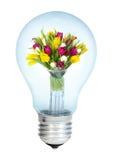 Electrobulb avec un groupe de tulipes Photographie stock libre de droits