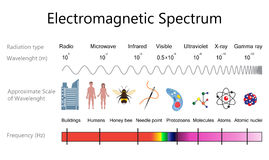 Electromagnetic Spectrum Diagram. Electromagnetic spectrum and wavelengths diagram. Vector illustration flat design Stock Photo