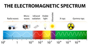 The electromagnetic spectrum vector diagram stock illustration