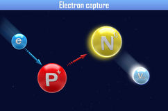Electron capture Royalty Free Stock Photo