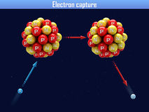Electron capture Royalty Free Stock Images