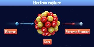Electron capture Royalty Free Stock Photos